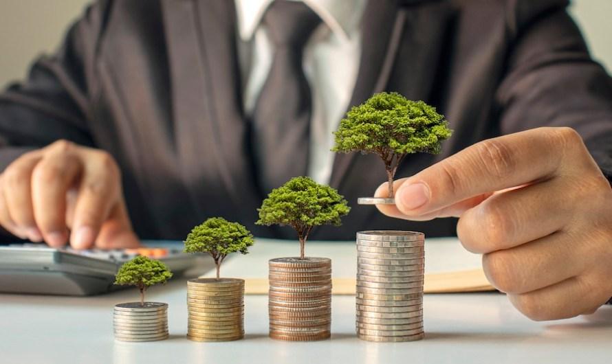 Liderzy ESG – najlepsze praktyki raportowania pozafinansowego