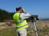 Bird-Surveys