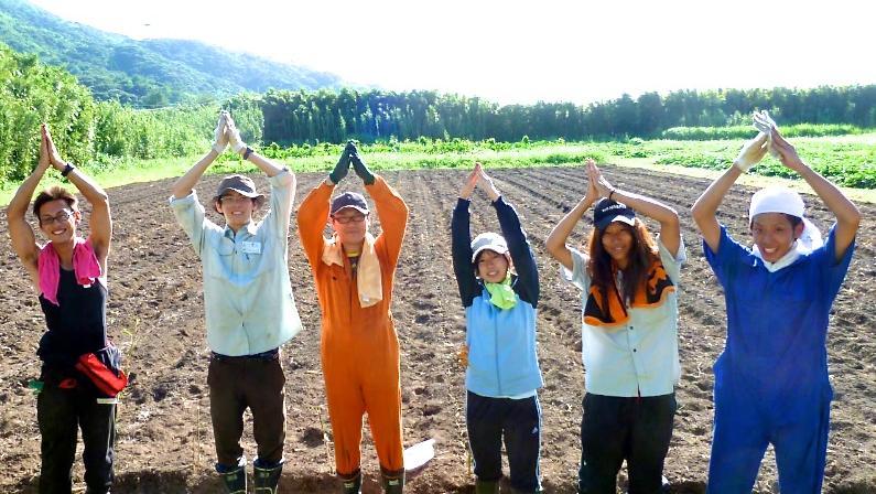 村おこしボランティア中之島コースで島ラッキョウの植え付けを終えた参加者