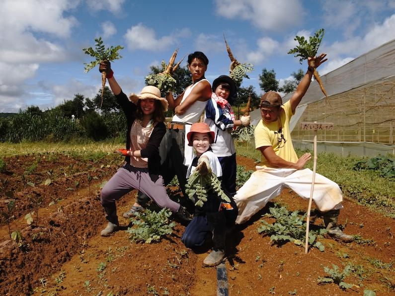 村おこしボランティア【ベトナム ダサ村コース】でのダイコンの収穫!