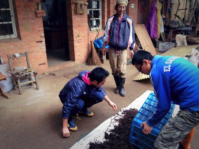 村おこしボランティア【台湾 淡水コース】でのボランティアの様子