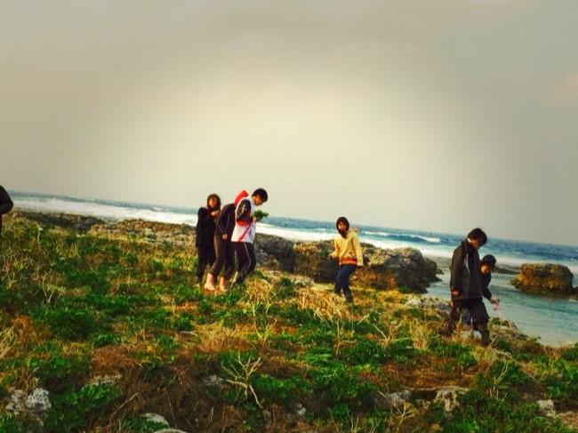 宝島で長命草を探す学生ボランティア