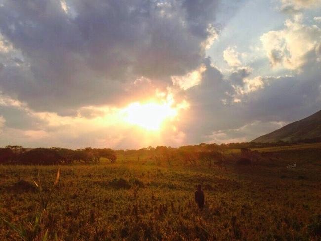 村おこしボランティア【諏訪之瀬島コース】で行った登山で山から見た風景