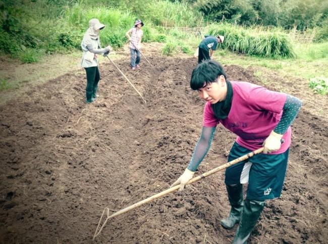 畑を耕す学生ボランティア