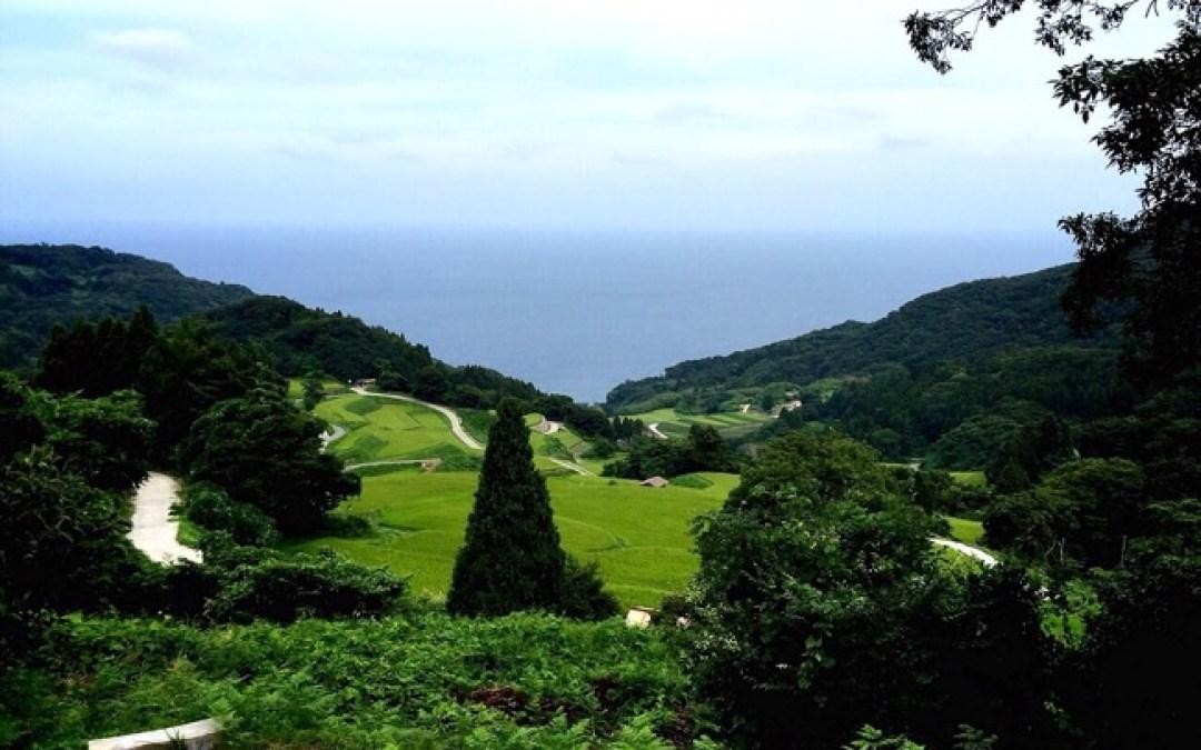 人の優しさや景色に何度も何度も感動する佐渡島