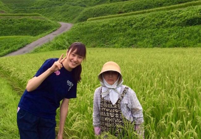 佐渡島でのボランティア活動の様子
