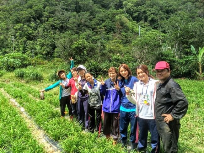 沖縄やんばるでのボランティア活動の様子