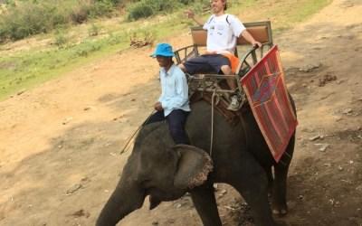 象に乗って川渡り