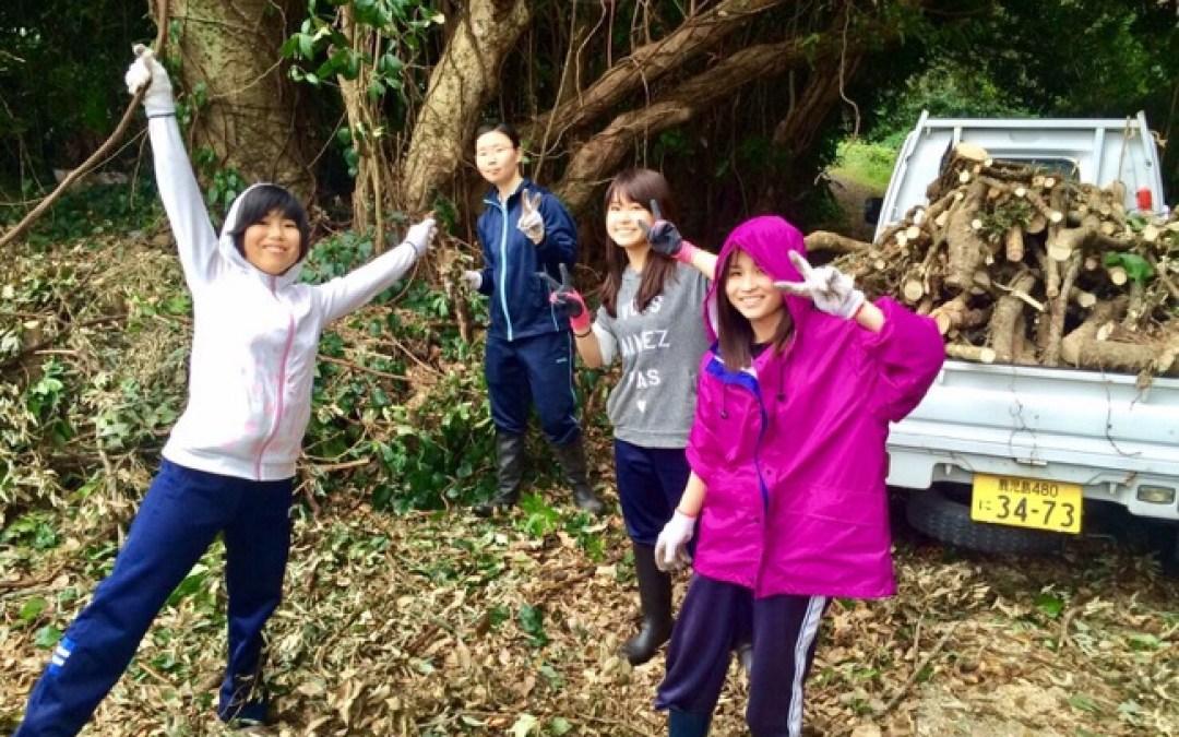 初めての作業は薪木の選別と伐採