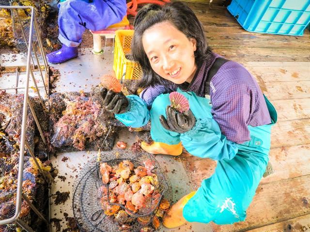 村おこしボランティア【屋形島コース】でのヒオウギ貝のお手伝い