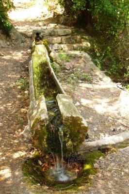 El bassis de la Font del Teix