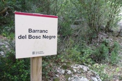 Barranco del Bosc Negre