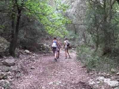 pista hacia Vall Figuera