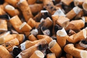 "cigarette litter ""decomposing"""