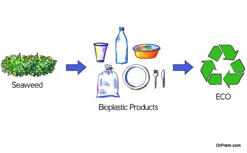 Bioplastics: Advantages, Disadvantages, Trends, and more - Ecofriend