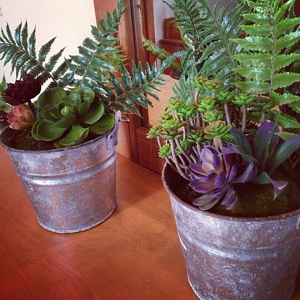 Planters made of old buckets