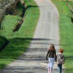 walking benefits - clarity