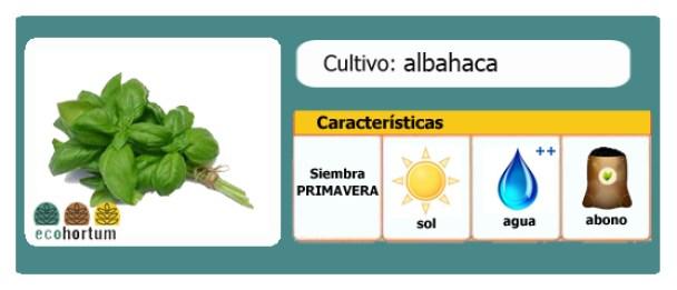 Ficha cultivo albahaca   EcoHortum