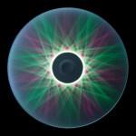 movimenti di luce 4