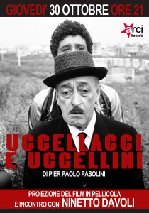 UCCELLACCI_web