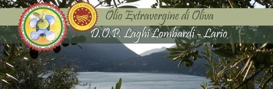 olio d'oliva lario