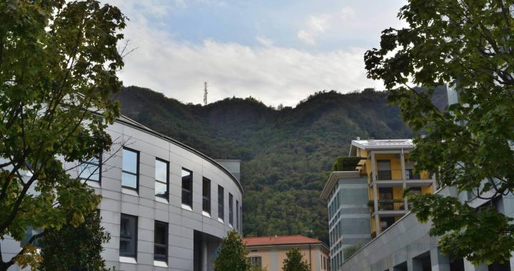Viale Varese: 1194 firme per salvare il verde