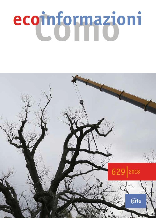 629 copertina