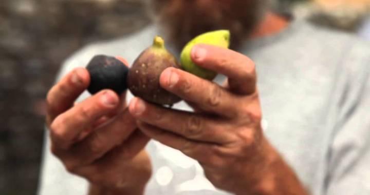 Teodoro Margarita/ Le mani nella terra