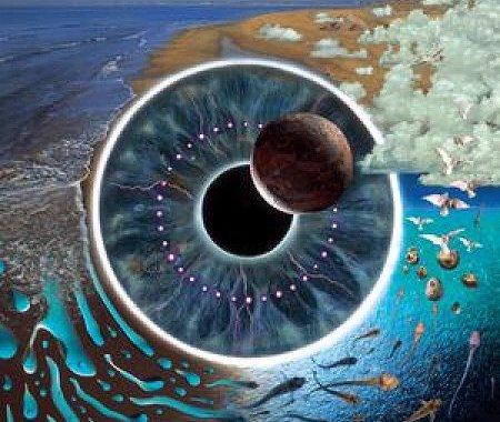 15 maggio/ Arciwebtv/ Pink Floyd in concerto