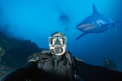 selfie-con-squalo