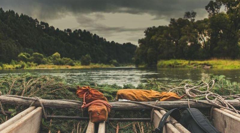 Amazzonia: da foresta a savana. L'effetto del cambiamento climatico è evidente