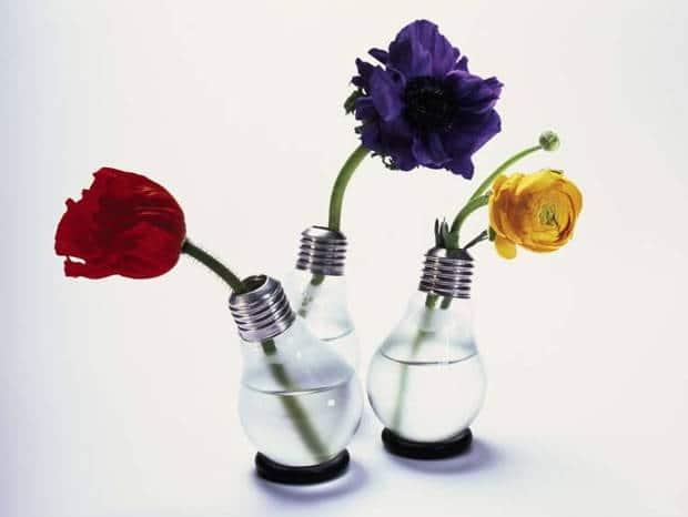 jarron con flores bombilla