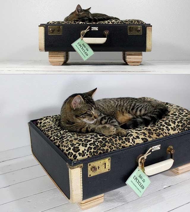 Ideas de camas para gatos con objetos reciclados - Casas para gatos baratas ...