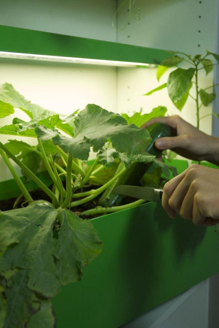 Parasite Farm-9-Fábrica-de-compost
