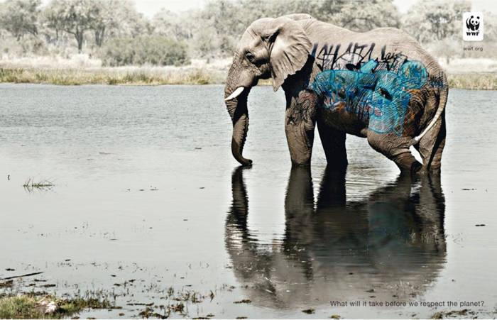 Que necesitamos antes de respetar el planeta
