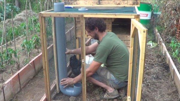 Como-hacer-un-comedero-para-las-gallinas