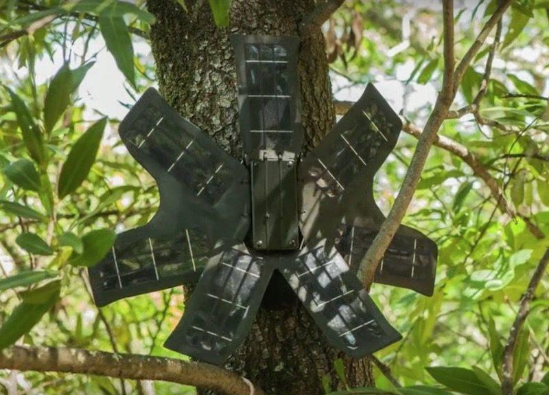 Topher White tiene un sistema para salvar los bosques usando smartphones viejos