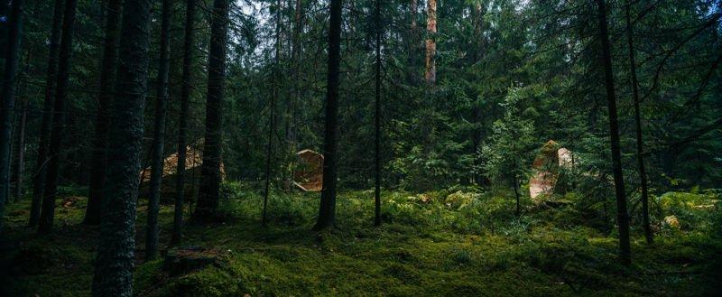 Gigantescos altavoces de madera 4