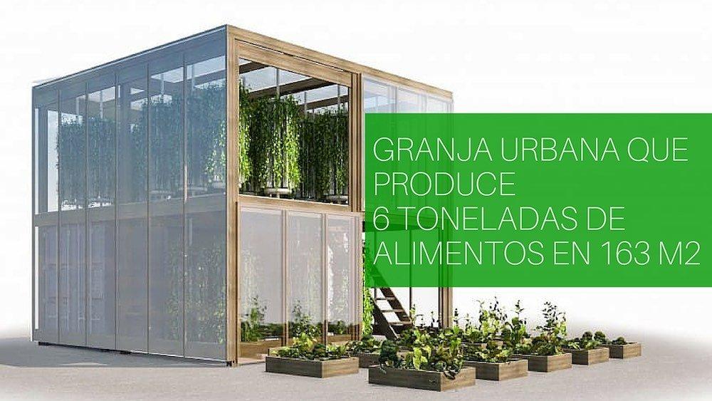 Granja urbana que produce 6 toneladas de alimentos