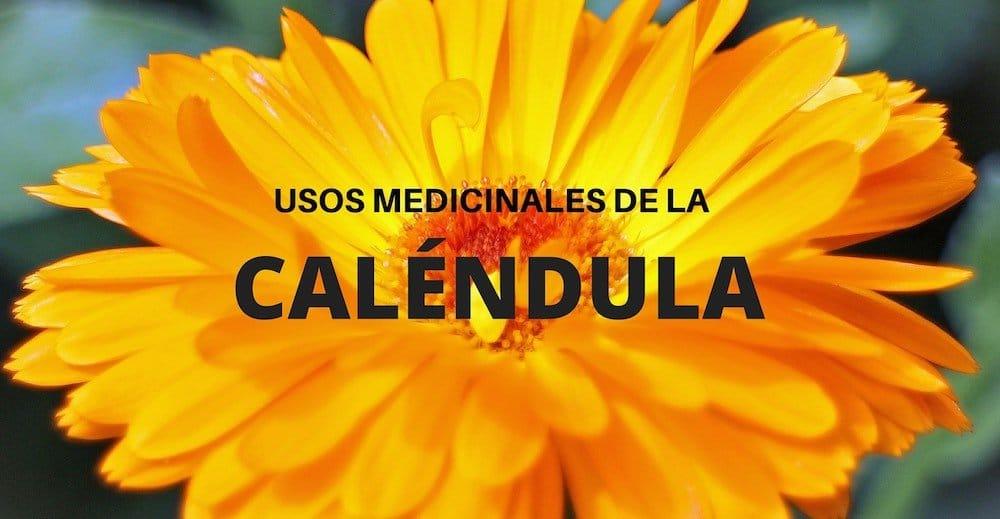 usos medicinales de la calendula