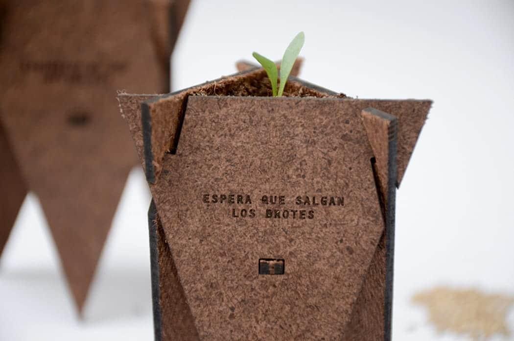 Solución de germinación orgánica2