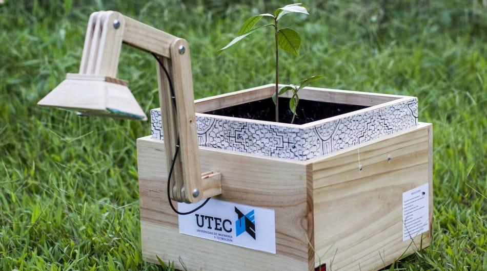 Plantalámparas: Iluminar la selva con energía de las plantas
