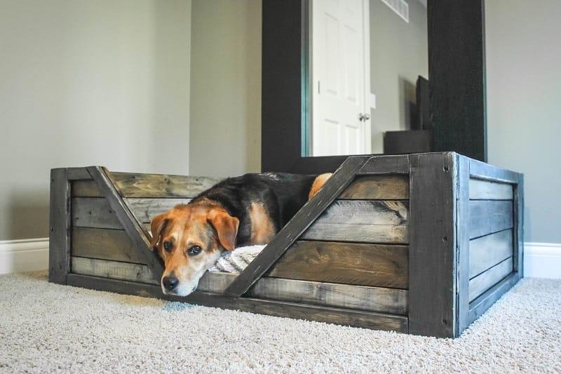 Como hacer una cama para tu perro con palets1