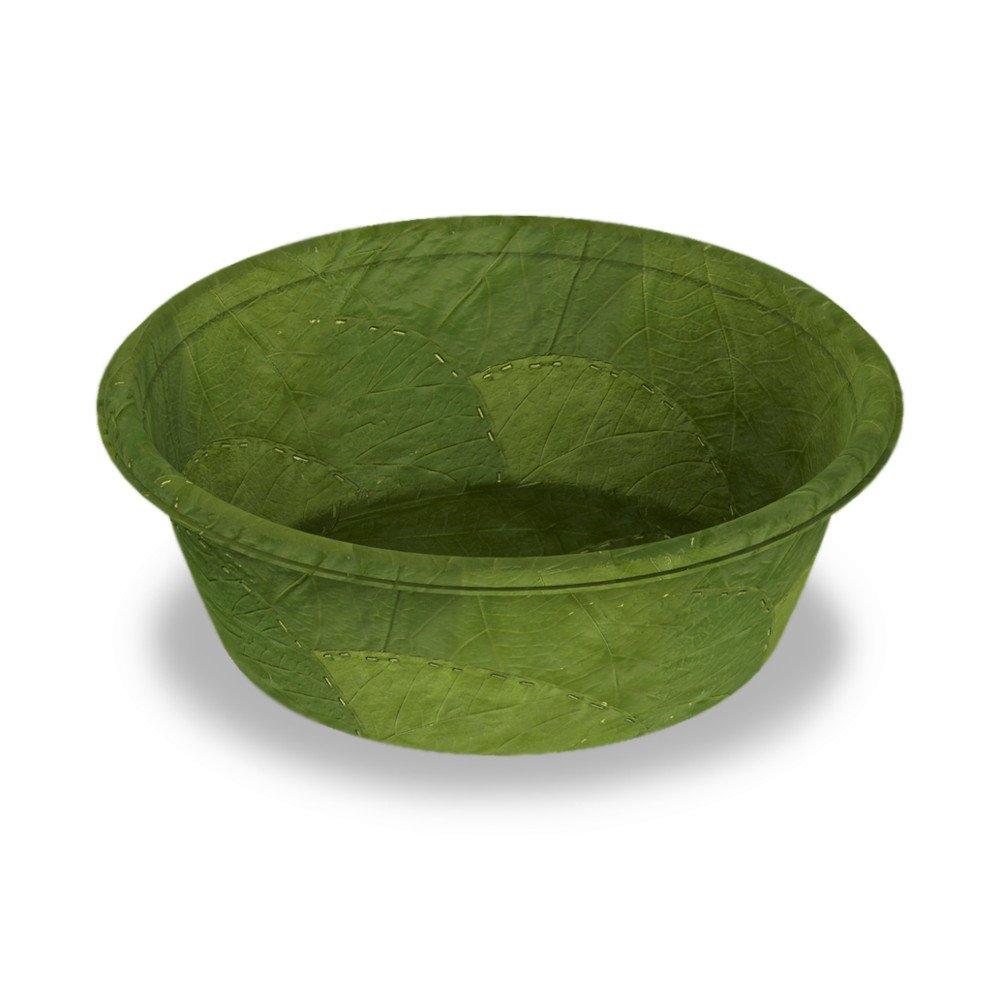 Platos biodegradables hechos con hojas naturales que se