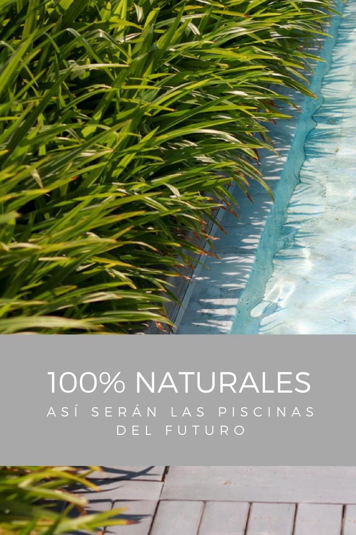 Descubre como ser n las piscinas del futuro 100 for Piscinas naturales cercedilla 2017