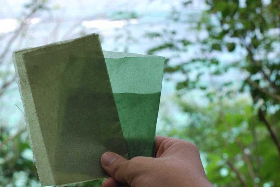 Desde Indonesia, envoltorio biodegradable a base de algas