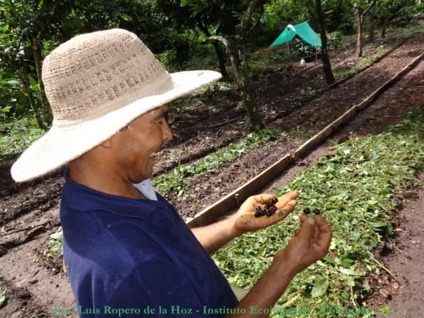 Huerto Tananeos - Horticultor