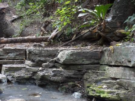 Rocas sedimentarias - Manaure