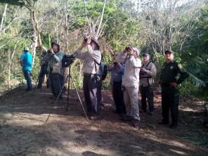Birding Tananeos IMG_201703