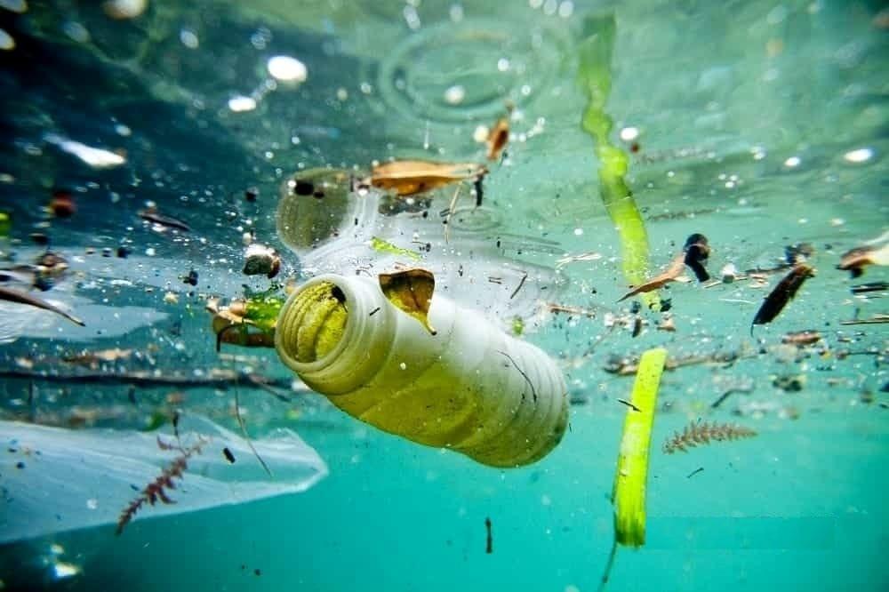 plastica che buttiamo via